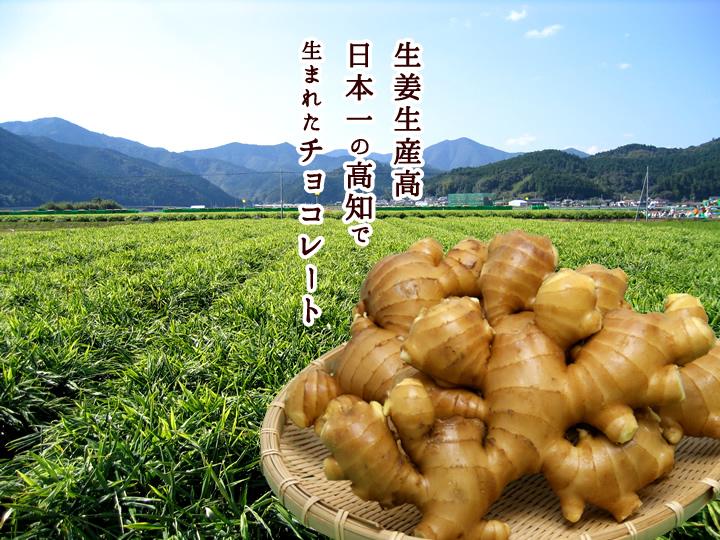 生姜生産高 日本一の高知で 生まれたチョコレート