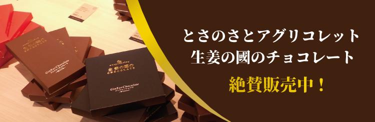 とさのさとアグリコレット 生姜の國チョコレート 絶賛販売中!